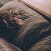 Trik Tidur Nyenyak untuk Tingkatkan Produktivitas selama WFH