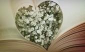 Puisi, Sajak, dan Kutipan Cinta Paling Romantis untuk Kekasihmu yang Terpisah Jarak