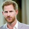 Pangeran Harry: Pandemi Jadi Momentum untuk Menata Industri Pariwisata