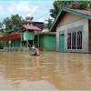 Dampak Bencana Alam Sampai Agustus 2021 Bikin 5,8 Juta Jiwa Menderita