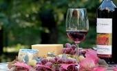 Kamu Gemar Minum Wine? Ketahui 5 Jenis yang Paling Sehat Untukmu