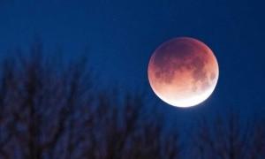 Akibat Strawberry Lunar Eclipse, Percintaan 3 Zodiak Ini Berubah 180°