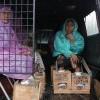 Semen Indonesia Sepakat Hentikan Penambangan, Istana Minta Aksi Cor Kaki Dihentikan