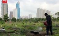 Kekurangan Lahan di Jakarta Picu Makam Fiktif