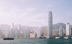 Mamalia Menggemaskan Ini Kembali Muncul di Perairan Hong Kong