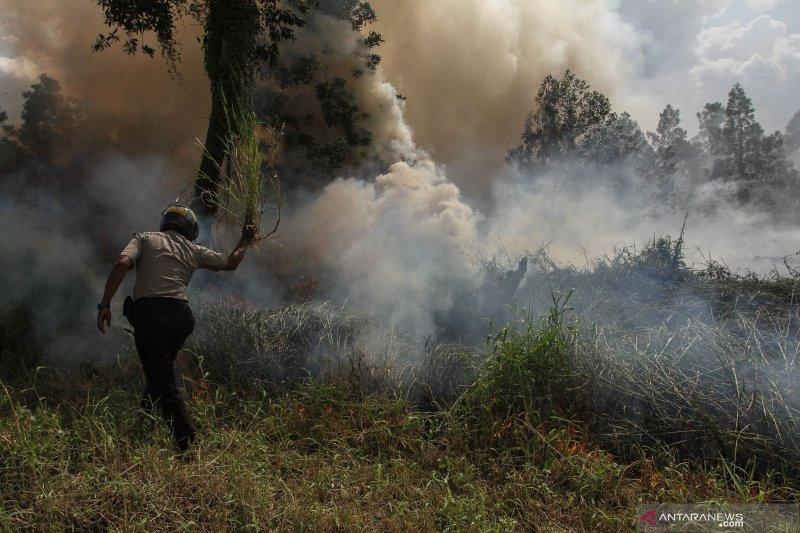 Personel Polsek Rumbai berusaha memadamkan api yang membakar semak belukar dengan alat seadanya disaat menunggu datangnya bantuan dari petugas Damkar dan BPBD ketika terjadi kebakaran lahan di Pekanbaru. (Foto: Antara)