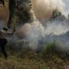 11 Titik Panas Karhutla Kepung Pesisir Riau