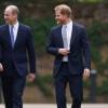 Pangeran William dan Harry Hormati Patung Ulang Tahun ke-60 Putri Diana