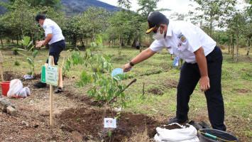 Dukung Pelestarian Alam, KAI Tanam 18.000 Bibit Pohon