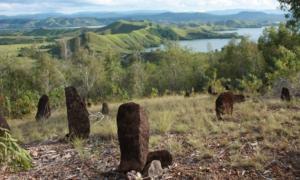 Membaca Kisah Suku Tutari yang Punah di Situs Megalitik