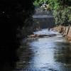 Pemkot Bandung Janjikan Penataan 40 Sungai untuk Ruang Terbuka Hijau
