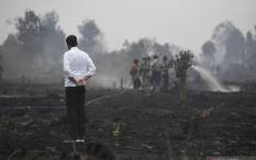 Jokowi Takut Ada Gubernur, Pangdam, Kapolda Baru. Kenapa?