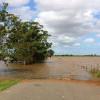 Banjir? Ini yang HarusPemilik Kendaraan Perhatikan