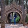 Berburu Foto Instagramable di Hutan Pinus Pengger Bersama Travel Trip