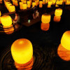 Keren, Instalasi Seni Lampu Mengapung dari teamLab