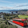 Dari 'Nyeker' sampai Barang Gratis, Nih 6 Fakta Unik di Selandia Baru!