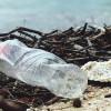 Bahaya Mikroplastik untuk Manusia