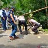 Usai Tetapkan Sopir Bus Maut Tersangka, Polisi Langsung Keluarkan SP3
