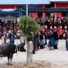Tradisi Ulaon Matumona, Sebuah Doa Keselamatan Masyarakat Batak