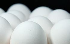 Jangan Sembarangan Jika Beli Telur, ini Panduannya