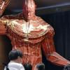 Kampung Halaman Hajime Isayama Punya Museum 'Attack on Titan'