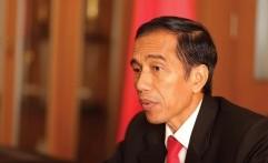 Akibat Gempa, Presiden Jokowi Menelepon Gubernur, CPNS Kocar-kacir